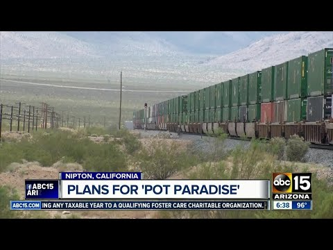 """We're taking a look at the plan for """"Pot Paradise"""" in Nipton, California"""