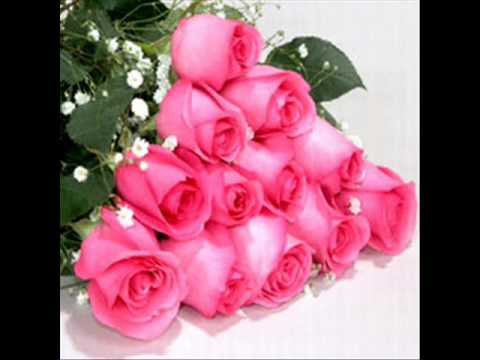 World best flowers for you wid my fav song youtube for What are the best flowers