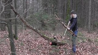 Building A Survivalbow And Arrow