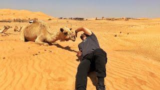Bliss, the Camel Whisperer?