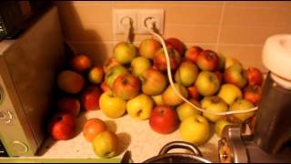 Яблочное вино часть 1