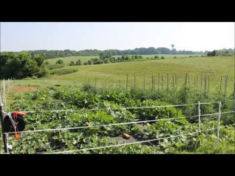Story of a Demonstration Garden-Virginia Cooperative Extension