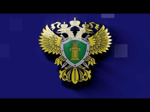 НТС Севастополь: Что делать, если вы стали свидетелем преступления?