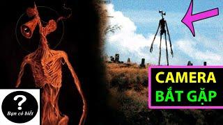 Những Lần Camera quay được Quỷ Đầu Loa (Siren Head) |Bạn Có Biết?