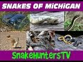 Snakes Of Michigan - SnakeHuntersTV