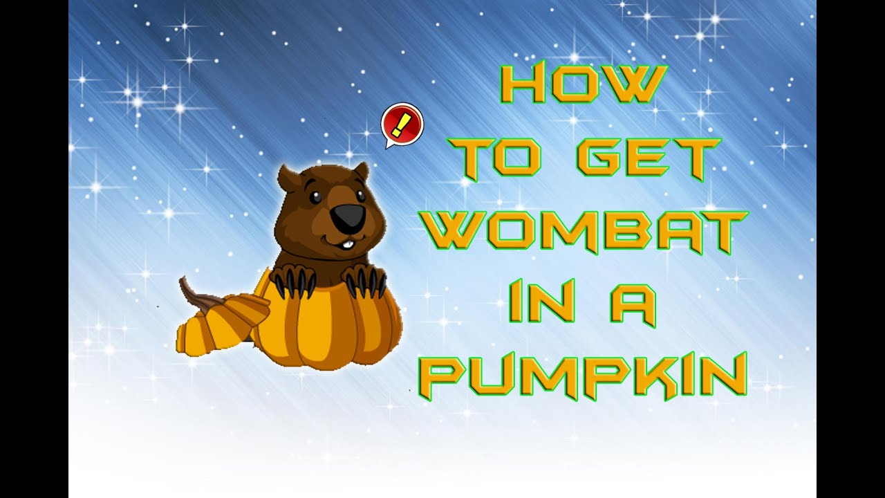 AQW: how to get Wombat in a pumpkin cool house item - YouTube