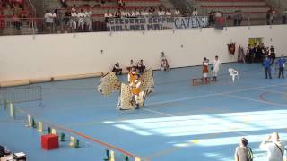 Qualificazioni F.I.SB. 2013 - Singolo