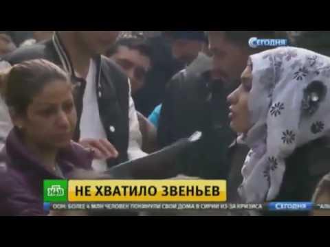 Новости кабмина украины на сегодня
