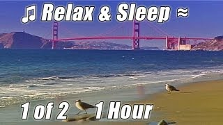 SMOOTH JAZZ Playlist Soothing Music for SLEEP Relaxing Soft Slow Songs Sleeping Sleepy Ocean Babies