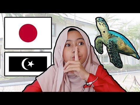 Mia Tengok Penyu Cakap Jepun? - Pesanan kat ending paling best