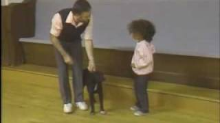 Off With Children - Sirius Puppy Training Classic