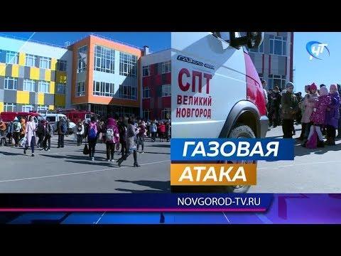 11 детей пострадали в 37-й школе Великого Новгорода от распыленного газа