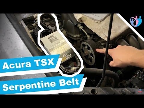 Acura TSX 2005 Serpentine Belt Replacement How To tutorial