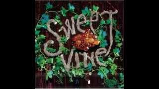 Sweet Vine - Downside of Wonder