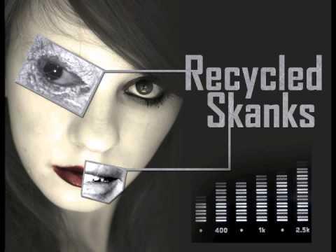 LMFAO, Lil Jon & Jesse Sarr VS. Rehab, Kill the Noise & Dillon Francis (Recycled Skanks Mashup)