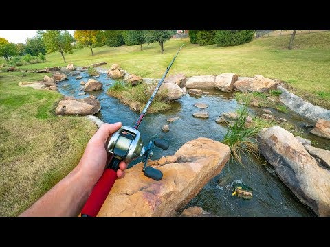 Fishing A Hidden Man Made Creek In Urban Dallas