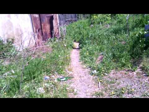Кушва:Видео_01.06.2016