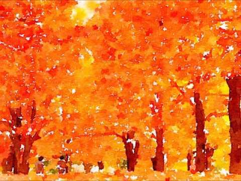 秋の木立ちと天気雨/NSP