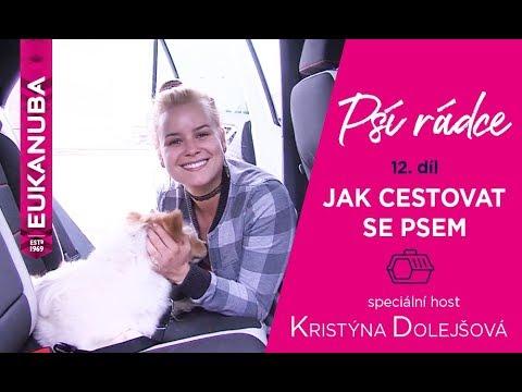 PSÍ RÁDCE - 12. díl, jak cestovat se psem / speciální host Kristýna Dolejšová - Za Normální Holky