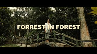 Forrest in Forest | Ballet Dance Cinematic Film | Canon EOS 5D Mark IV & Zhiyun Weebill S