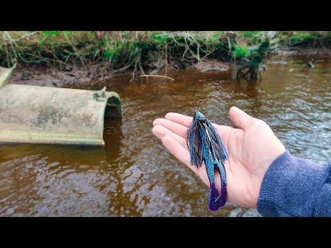 Fishing BIG JIGS for GIANT Bass (LOADED)