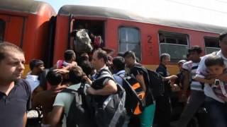 Mültecilerin dramı Makedonya'da da devam ediyor!