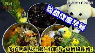 鸚鵡健康早餐拼盤!媽媽讓寶寶們每天都活力滿滿。「宜蘭鸚鵡」粉絲專頁