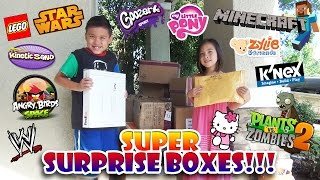 Repeat youtube video SUPER SURPRISE BOX Opening! LEGO, Minecraft, Plants vs. Zombies, Angry Birds, My Little Pony & More!