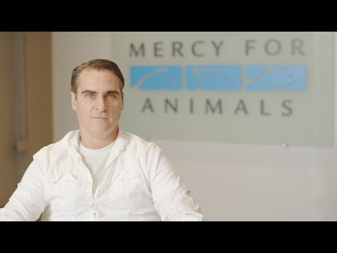 WATCH: Joaquin Phoenix Slams Walmart for Supporting Sickening Cruelty to Pigs
