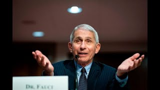 EXCLUSIVE: Fauci says hard-hit states should be 'pausing' the reopening process