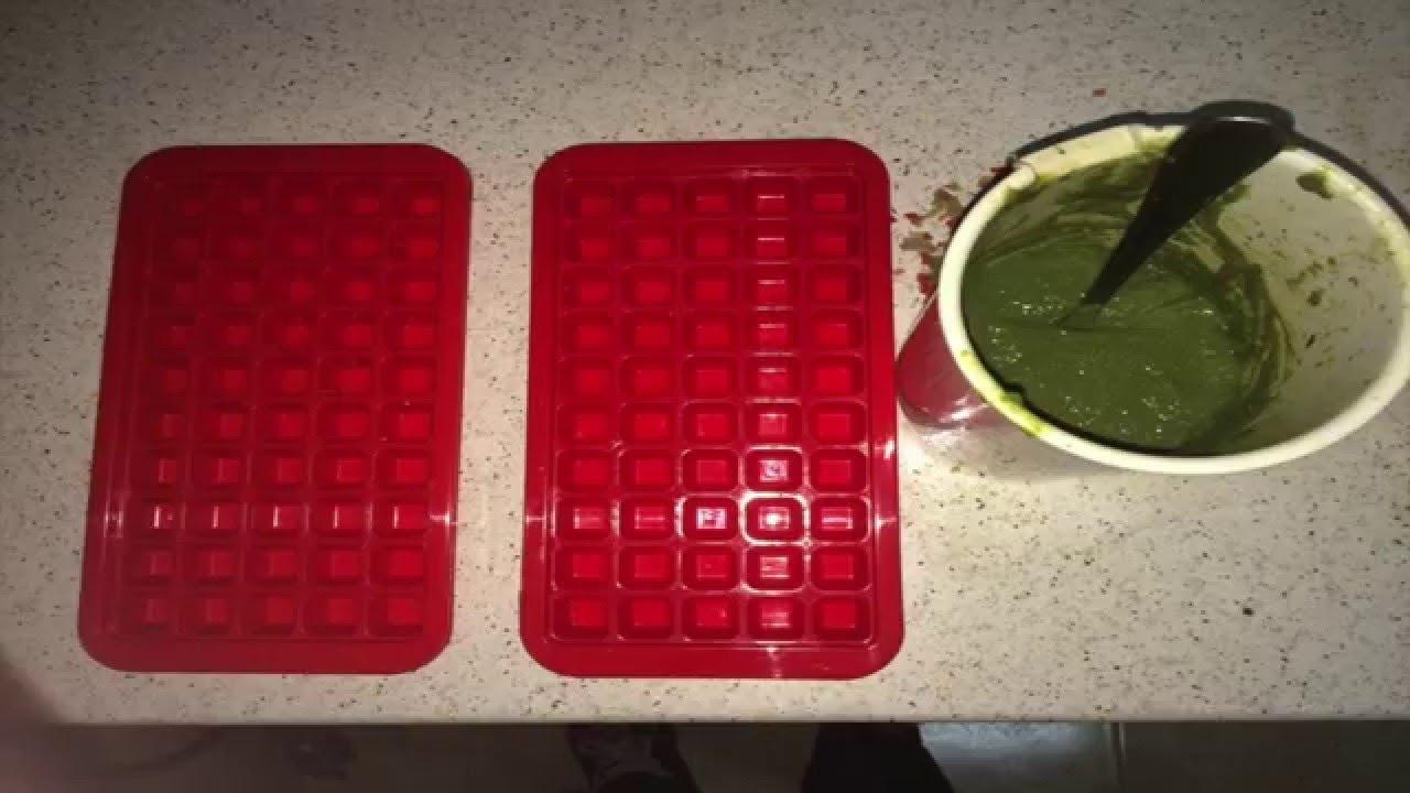 Como hacer comida alimento o papilla para peces guppy for Comida para peces