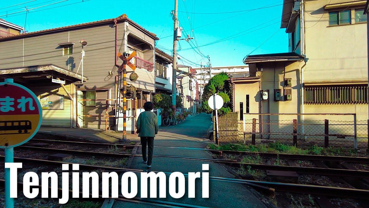 天神の森 高級住宅街 DJI Pocket 2 Osaka Walk - Tenjinnomori 4K Japan