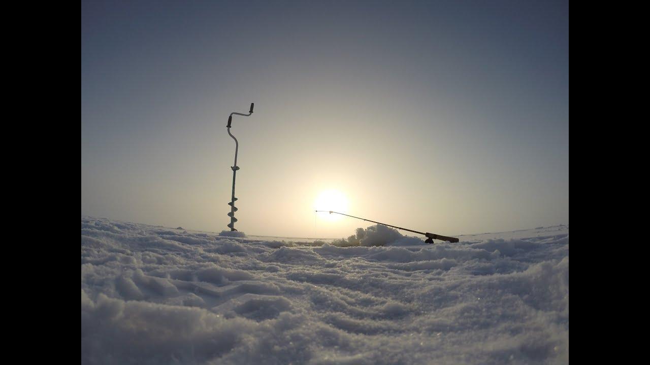 ловля окуня на блесну по последнему льду