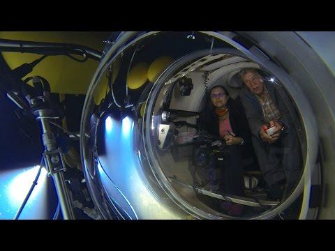 Diving El Hierro's Submarine Volcano