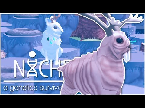 The Great Walrus-Deer Hunt!! • Niche: Snowy Mountain Update! - Episode #22