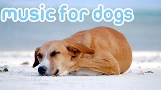 11 Hours of Deep Sleep Music to Relax You Dog! Helped 10 Million Dogs!