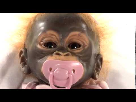 Lifelike Monkey Doll from Wendy Dickenson