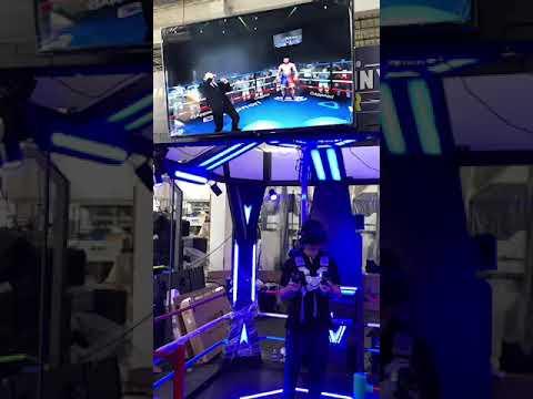 Manny VR Boxing Simulator