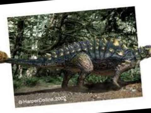 Top 10 Largest Ankylosauria