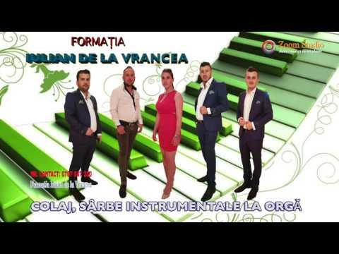 FORMATIA IULIAN DE LA VRANCEA - COLAJ, SARBE INSTRUMENTALE LA ORGA