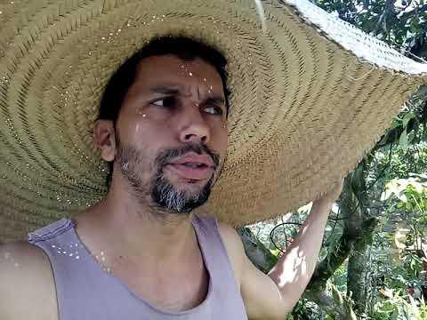 Luiz Lima 1717