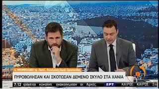 Χανιά   Πυροβόλησαν και σκότωσαν δεμένο σκύλο   21/01/2020   ΕΡΤ thumbnail
