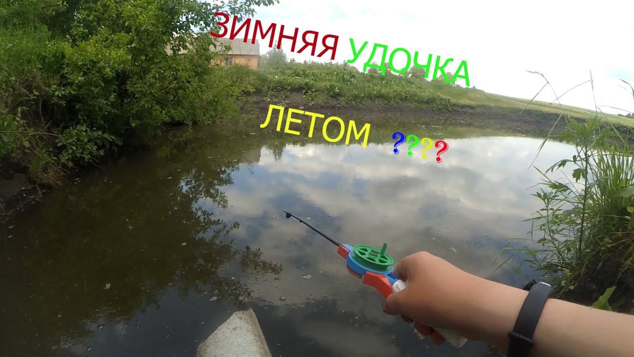 рыбалка карпа на живца