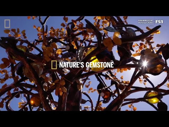 AMBER CAPITAL OF THE WORLD -  for National Geographic