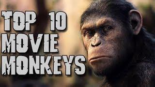 Dark Corners Top Ten Movie Monkeys