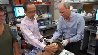 Is shock therapy making a comeback?