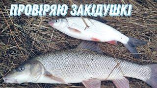 Рибалка на закідушкі на річці Горинь 2021