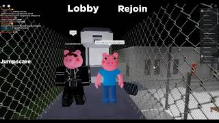 A Mystery Pig | The Infect Side of Views | Accurare Piggy Roleplay