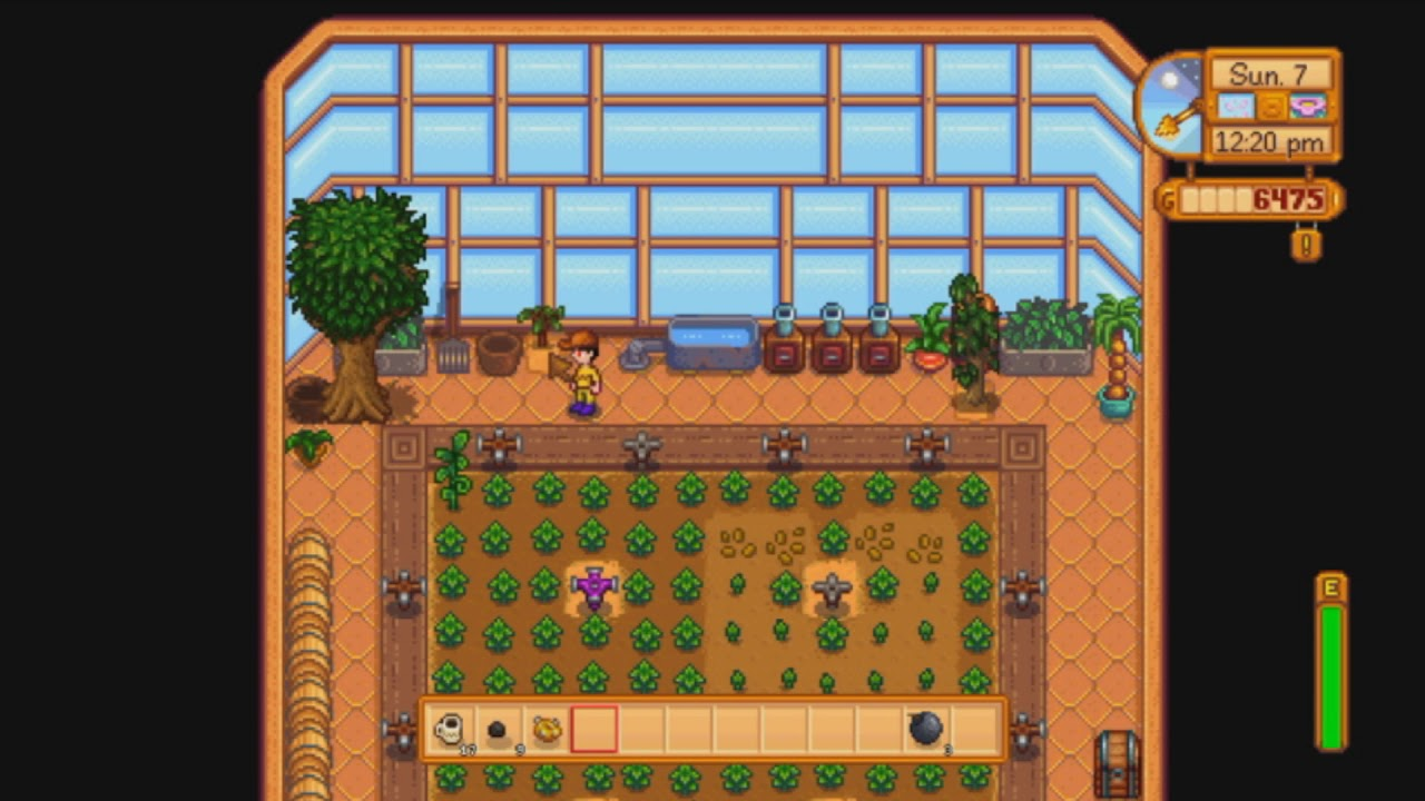 Stardew Valley Planting Trees On Walkway Of Greenhouse Year Round Fruit Nintendo Switch Youtube