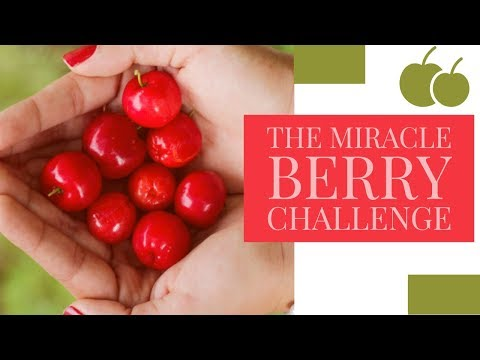 Miracle Berry Challenge ft MiCHi | WHAT IS THIS SORCERY?!